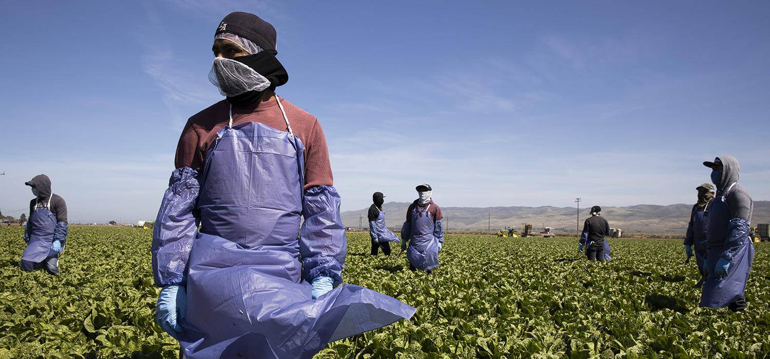 How COVID-19 Food Chain Relief Can Build a More Equitable Food System for Workers