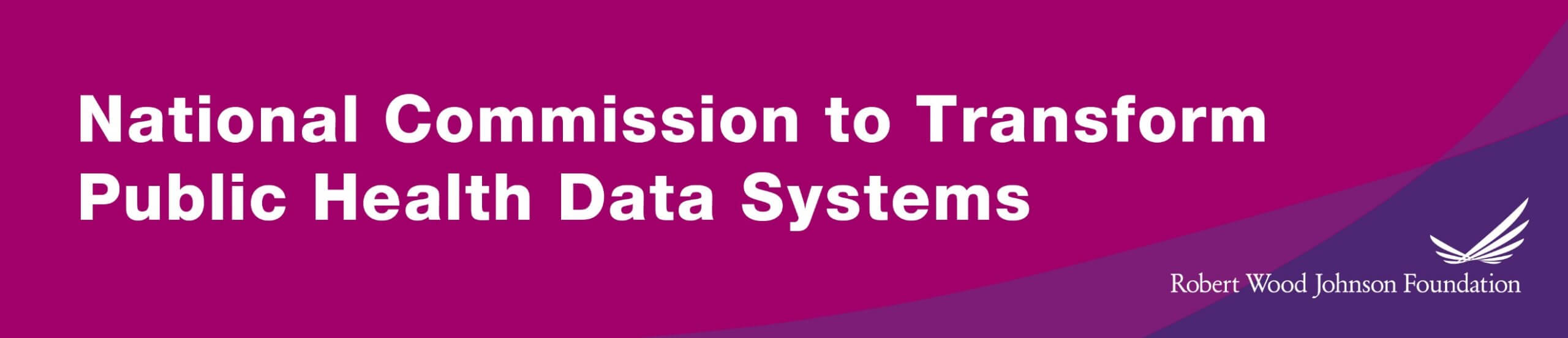 National Commission to Transform Public Health Data Systems Releases Report